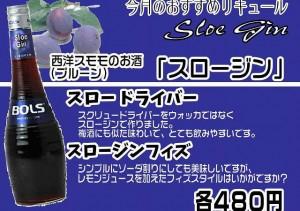 おすすめリキュール3_HP用_スロージン
